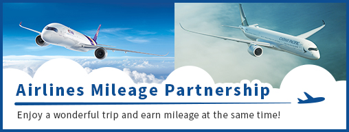 Airlines Mileage Partnership