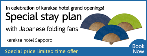 Support plan – Sapporo