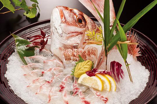 Fishing Restaurant Zauo, Shinjuku