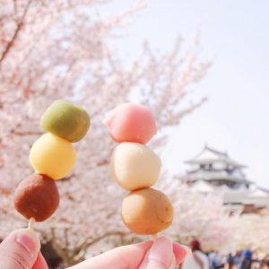 桜R_@chika_trip