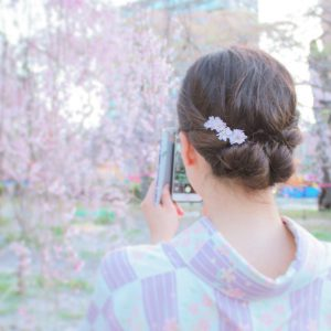 桜‗@puniiii3